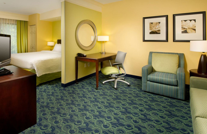 Guest Room at SpringHill Suites Jacksonville Airport