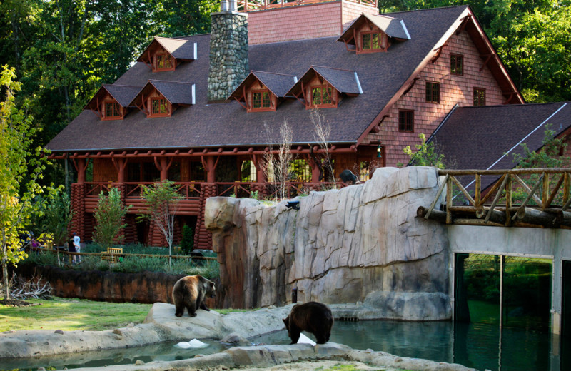 Zoo near Big Cypress Lodge.