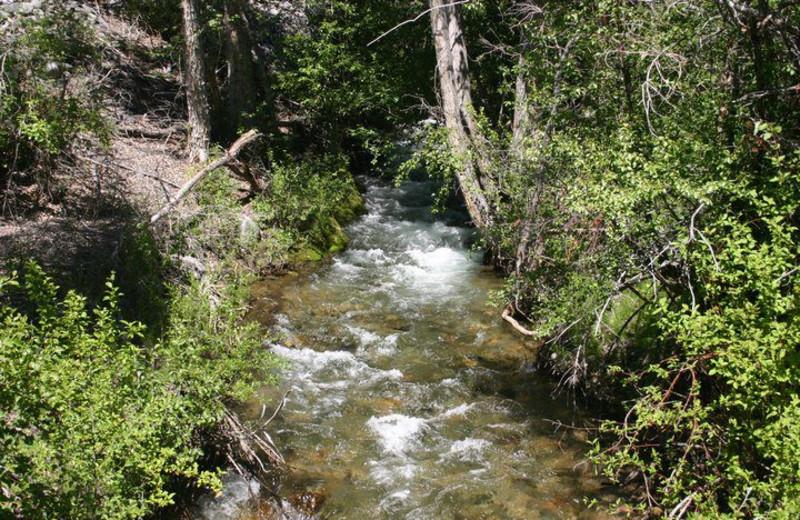Creek Near The Sugar & Spice Ranch