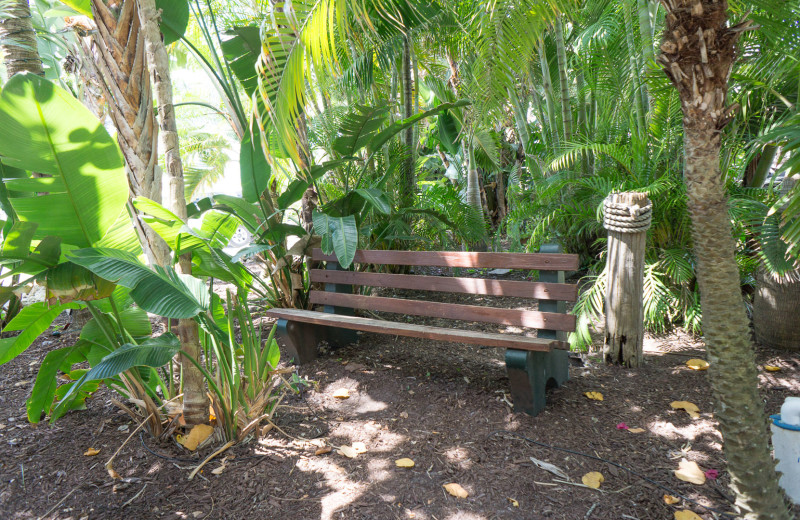 Bench at Lighthouse Resort Inn & Suites.