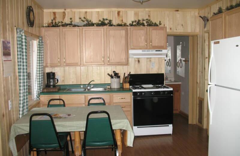 Cabin kitchen at North Shore Resort.