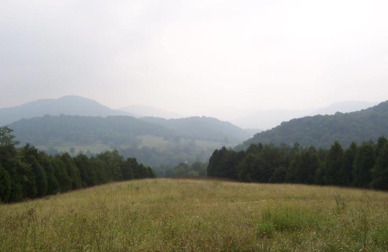 Scenic view at Creekside Resort.