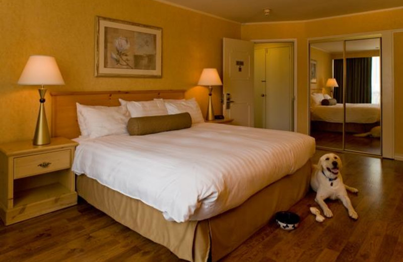 Guest room at Flamingo Conference Resort and Spa.