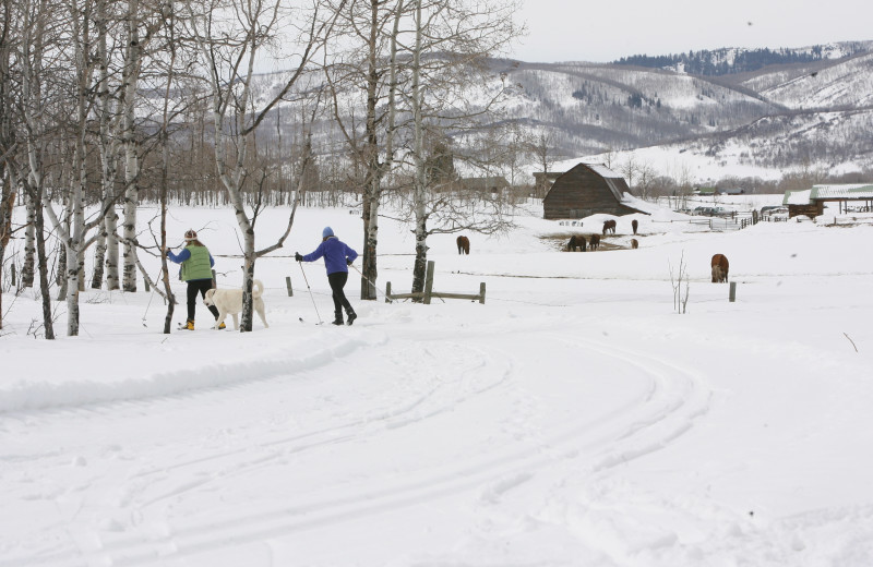 Winter skiing at The Home Ranch.