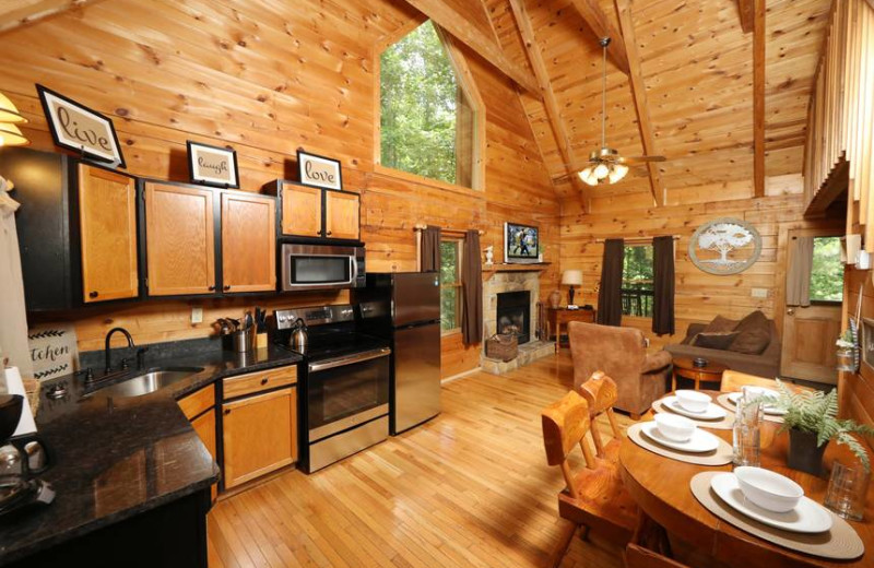 Cabin interior at Little Valley Mountain Resort.