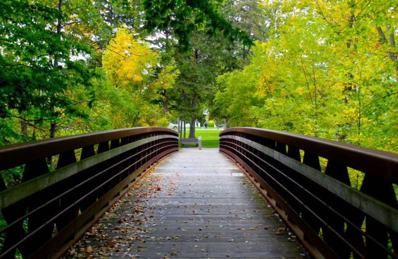 Bridge at Vine Ridge Resort.