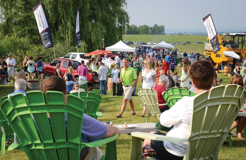 Music festival near Vine Ridge Resort.