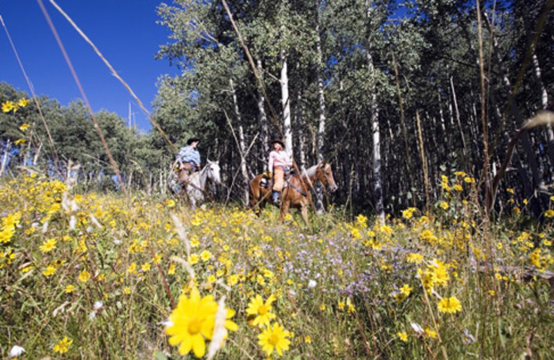 Horseback riding near The Charter at Beaver Creek.