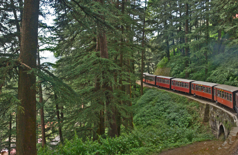 Train ride at Cecil - An Oberoi Resort.