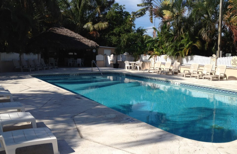 Outdoor pool at Boyd's Key West Campground Inc.