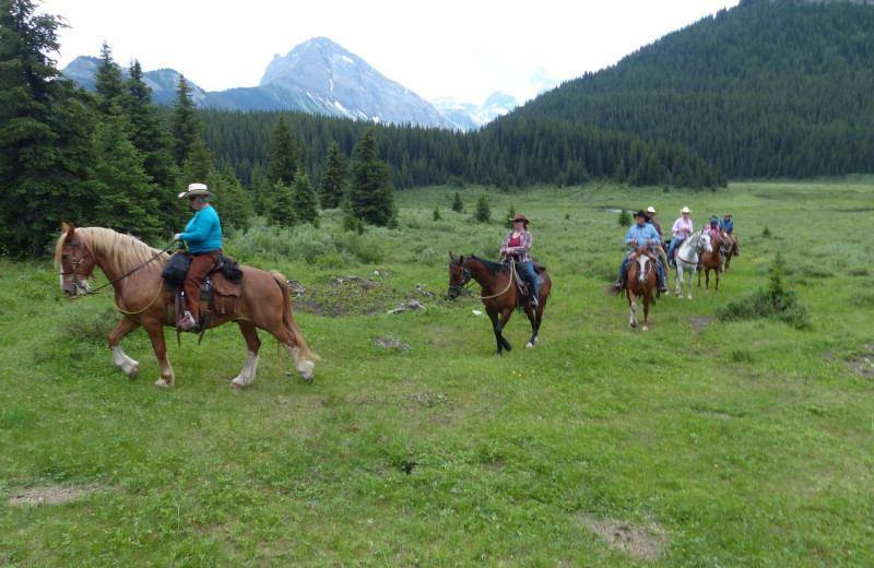 Horseback riding near Summit Lake Lodge.