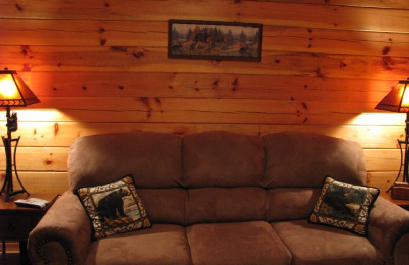 Cabin living room at Copperhead Lodge.