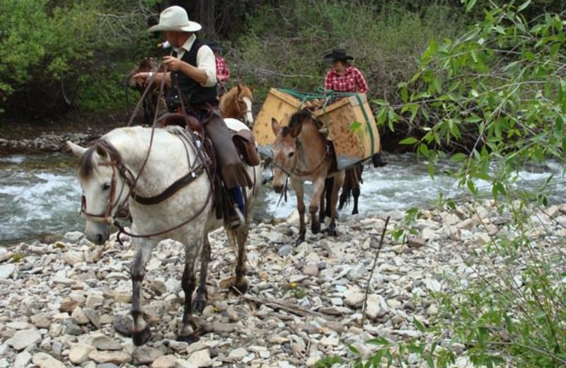 Horseback Riding at Smith Fork Ranch