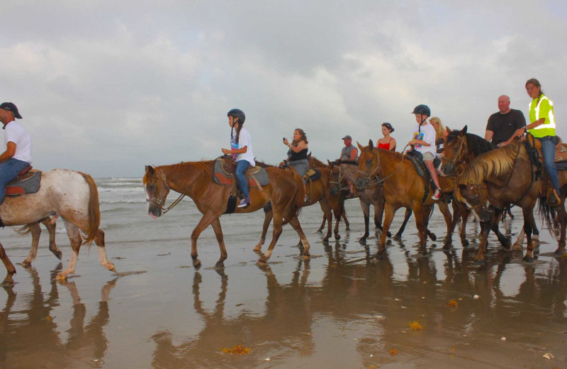 Horseback riding at Padre Island Rentals.