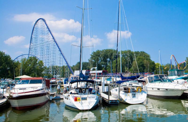 Marina at Cedar Point Resort.