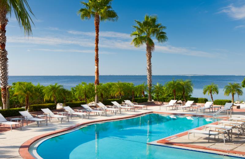 Swimming Pool at Grand Hyatt Tampa Bay
