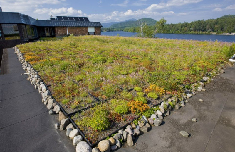 Green roof view at Golden Arrow Lakeside Resort.