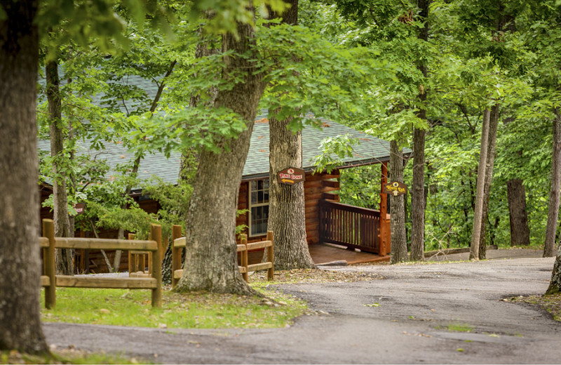 Serene cabins in a gorgeous wooded setting.