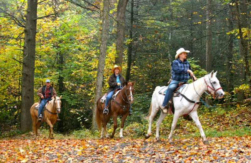 Horseback Riding at Clear Creek Guest Ranch