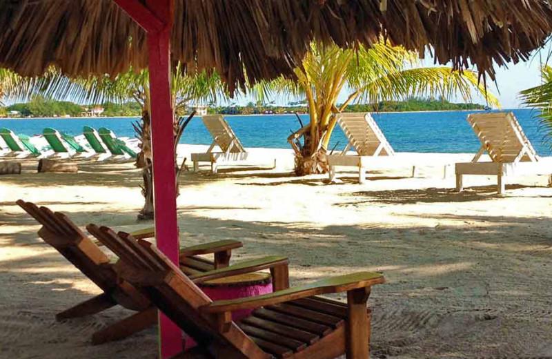Beach at Ranguana Lodge and Reef Resort.