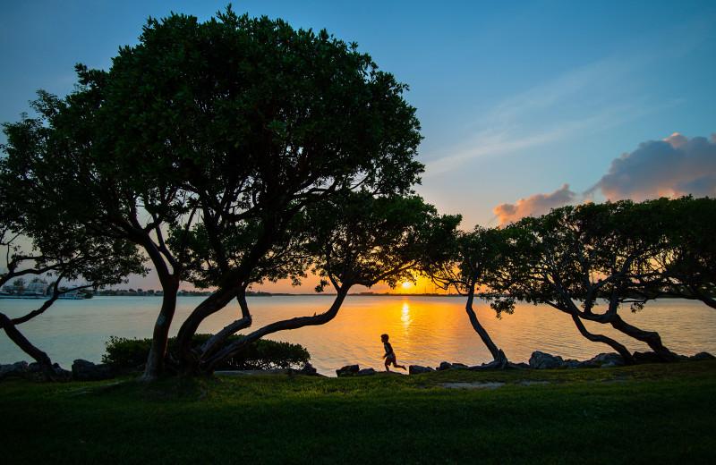 Sunset at Hawks Cay Resort.