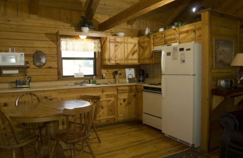 Cabin kitchen at Buffalo River Outfitters.