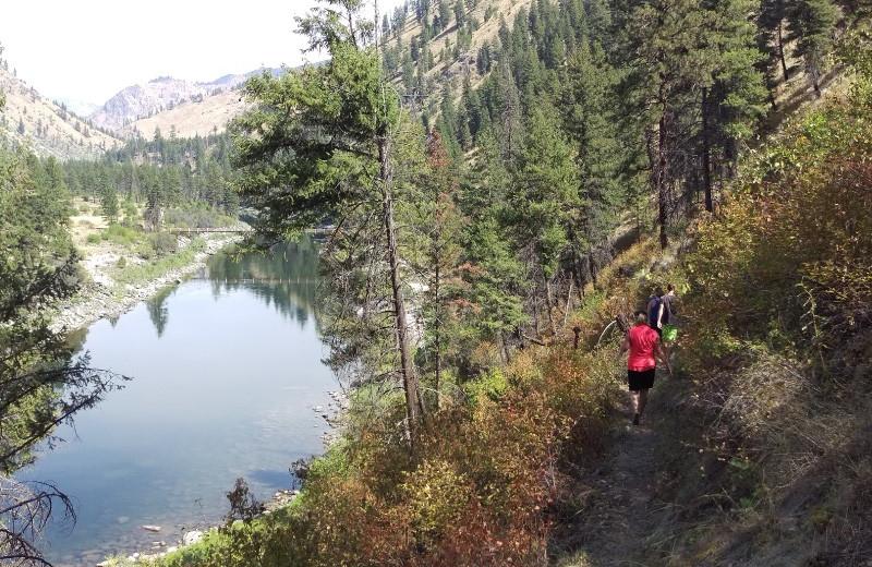 River view at Salmon River Tours.
