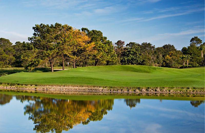 Golf course near Wyndham Bay Point Resort.