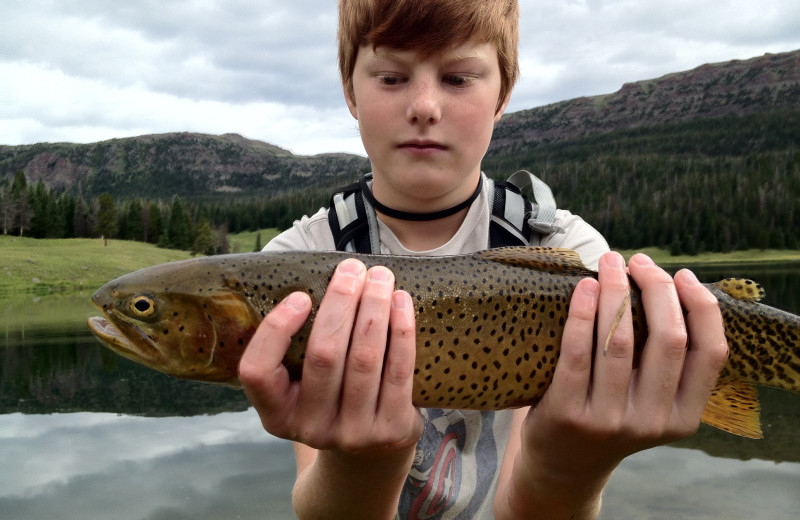 Fishing at Trappers Lake Lodge & Resort