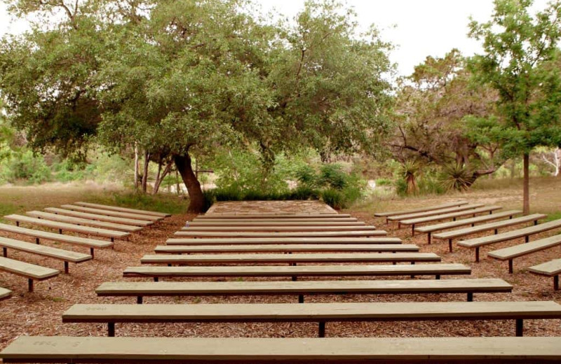 Amphitheater at Camp Balcones Spring.
