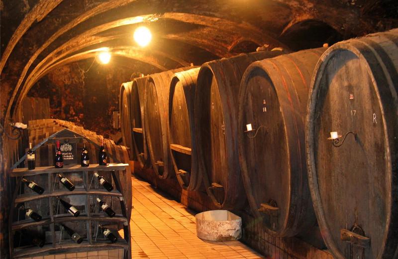 Winery near Glamping Olimia Adria Village.