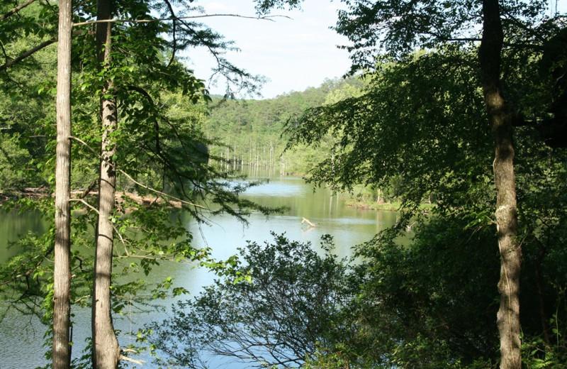 Mountain Fork River at Lake Mountain Cabins.