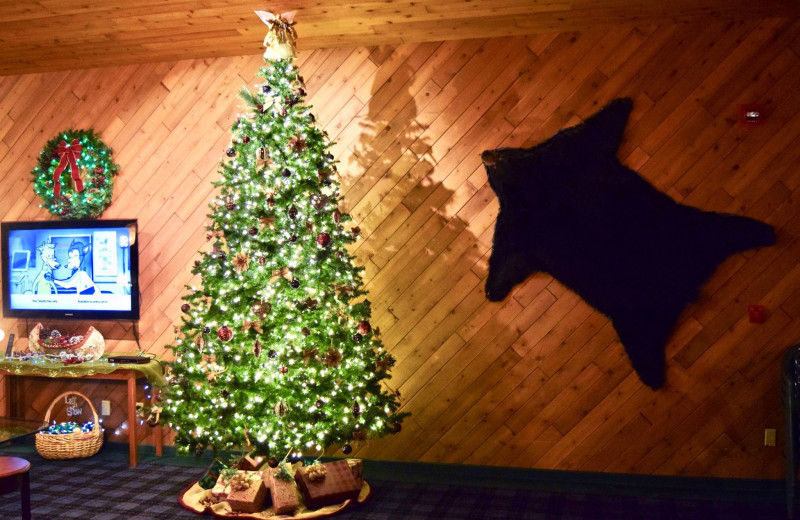 Christmas tree at Whitetail Lodge.