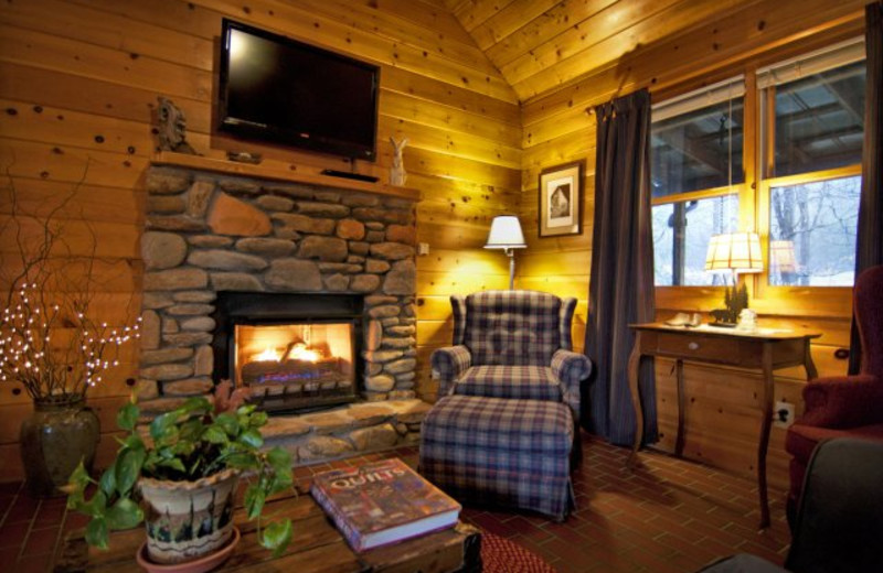 Cabin Living Area at Mountain Springs Cabins