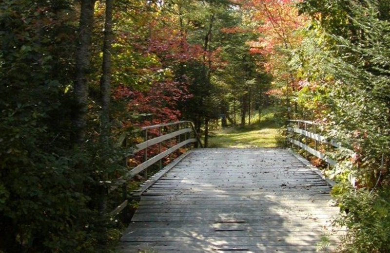 Fall at Lapland Lake Nordic Vacation Center