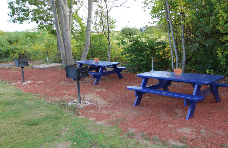 Picnic tables at Mariner Resort.