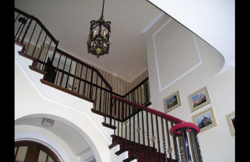 Entry stairs at Rileys Bed & Breakfast.