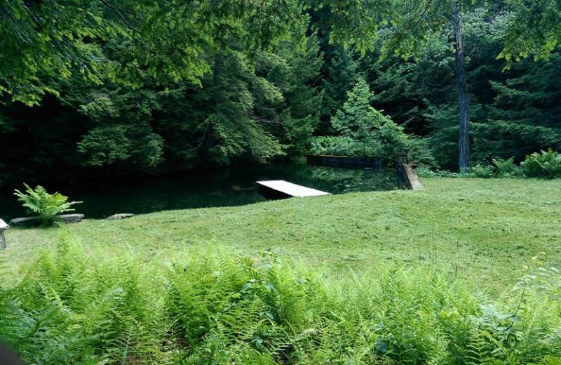 Pond at Three Stallion Inn.