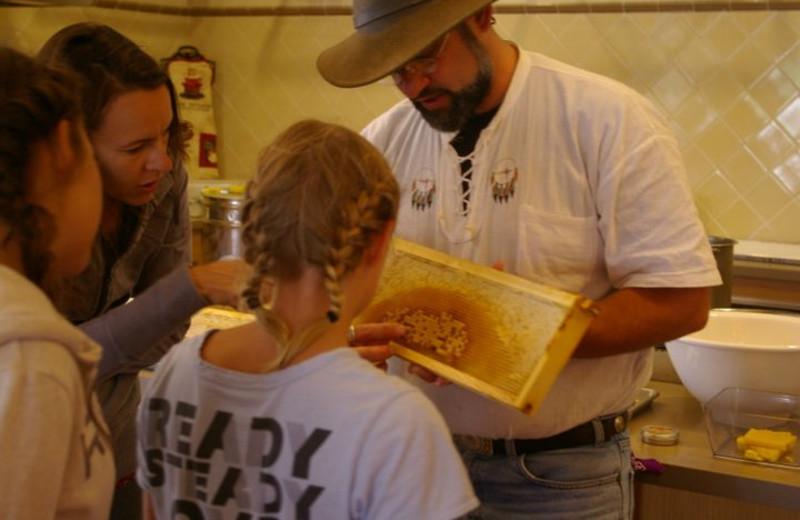 Honey Harvest at Carmel Valley Ranch