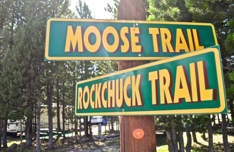 Trails at Sawtelle Mountain Resort.