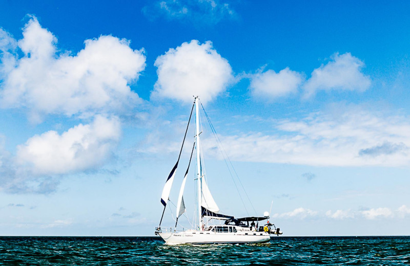 Sailing at Sunset Properties.