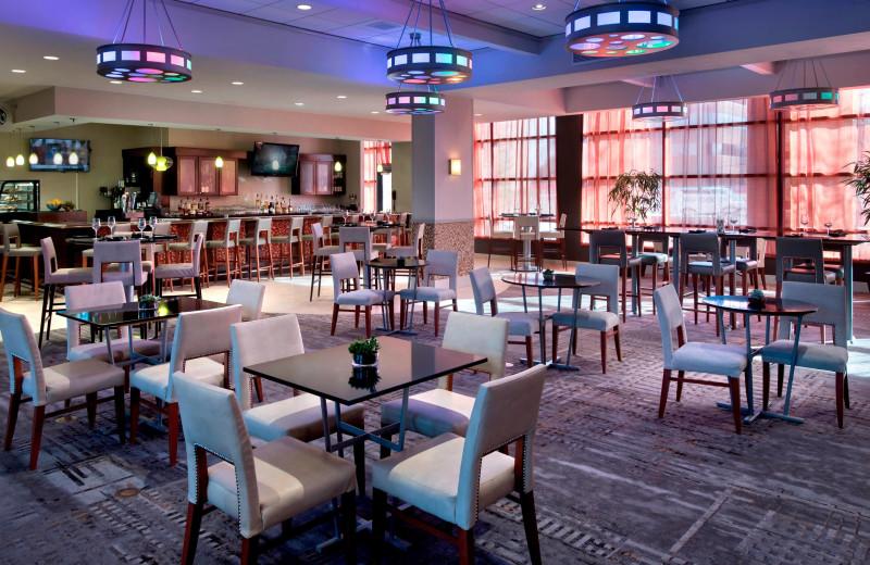 Dining at Albany Marriott.