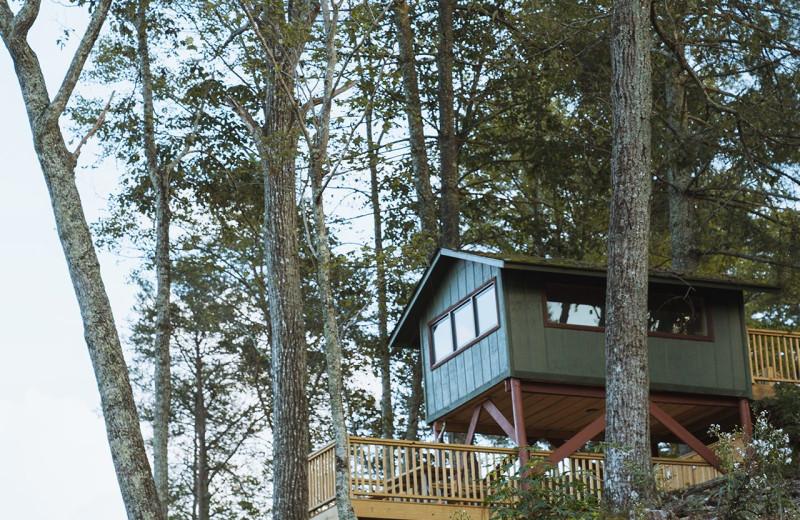Cabin exterior at Yogi Bear's Camp Golden Valley.