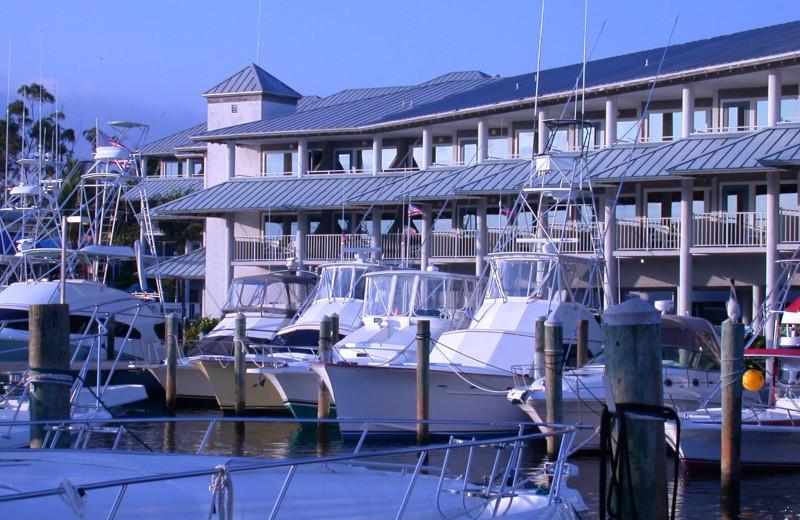 Marina at Pirate's Cove Resort & Marina.