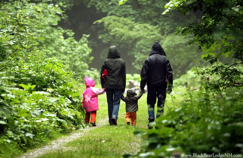 Family hiking near Black Bear Lodge.
