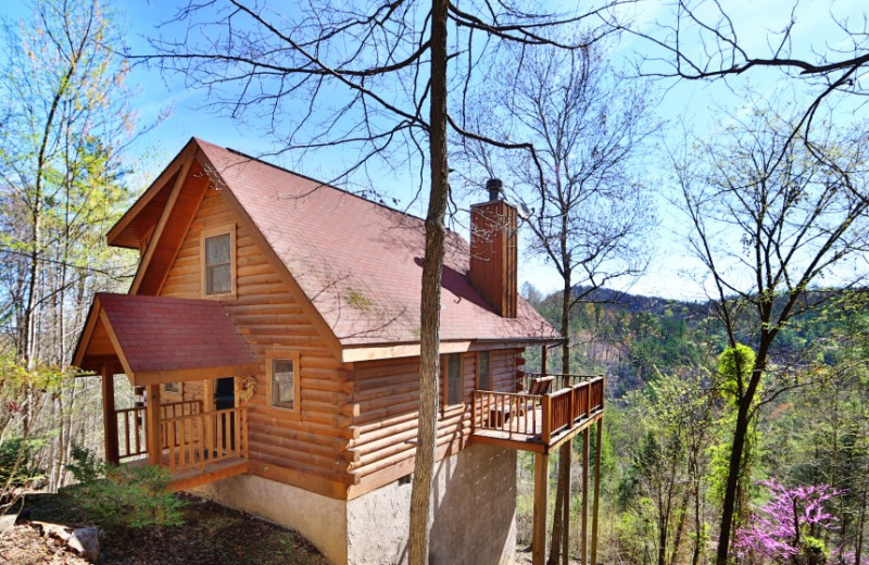 Ooh La La cabin at  Little Valley Mountain Resort