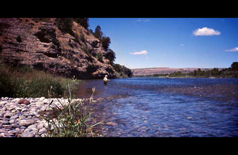 South Fork river near Rocky Mountain Elk Ranch.