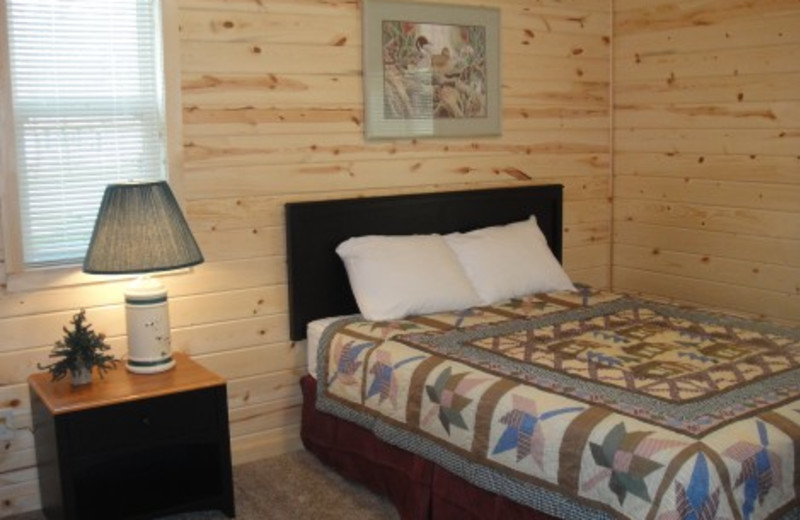 Pineview Lodge - 4 bedrooms