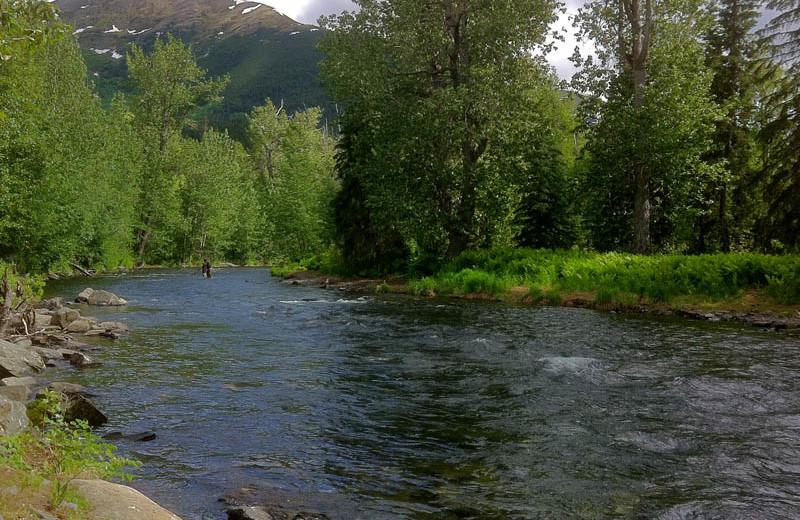 River at Kenai River Drifters Lodge.