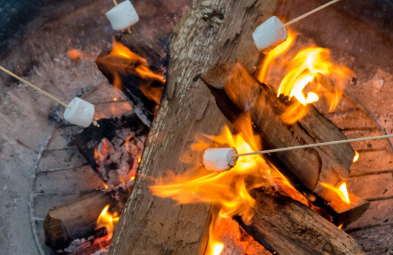 Roasting marshmallows at Canyon of the Eagles.